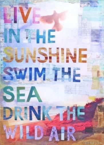 Swim in the sunshine