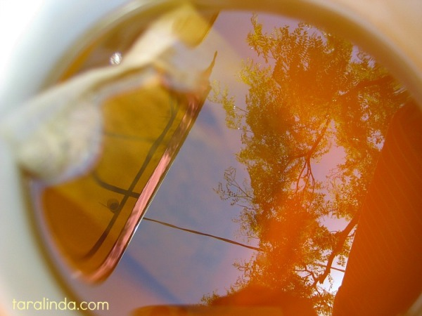 tea for trees6020